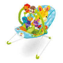 Fisher Price Precious Planet Bouncer