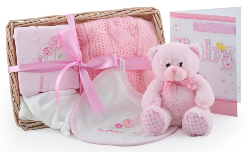 New Baby Gifts Uk Delivery : Bear and bundle baby girl gift basket at ?