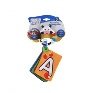Baby Einstein World Around Me Discovery Cards