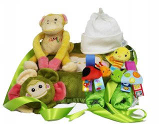 Monkey Fun New Baby Gift Basket
